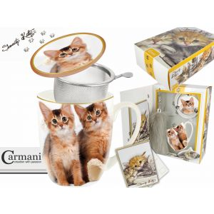 Carmani CR-017-2502 14 Oz Cats Mug With Lid and Infuser, EA